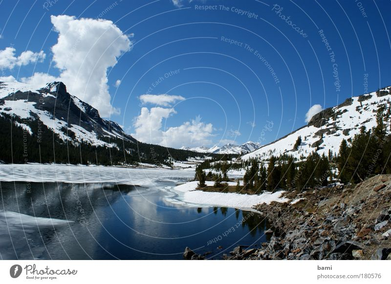 Lake in Yosemite NP Colour photo Exterior shot Deserted Day Reflection Central perspective Nature Landscape Water Sky Beautiful weather Snow Park Mountain