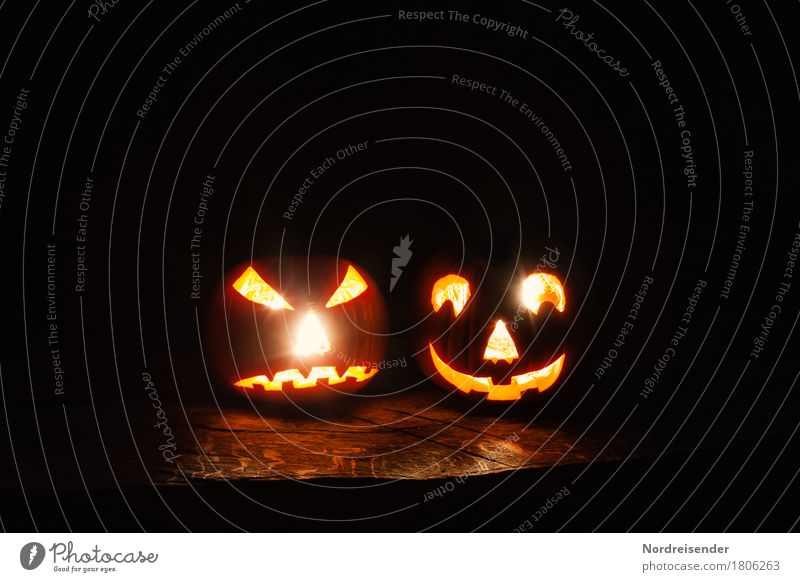 Joy Dark Party Leisure and hobbies Fear Decoration Crazy Threat Friendliness Vegetable Hip & trendy Anger Creepy Ghosts & Spectres  Lampion Handicraft