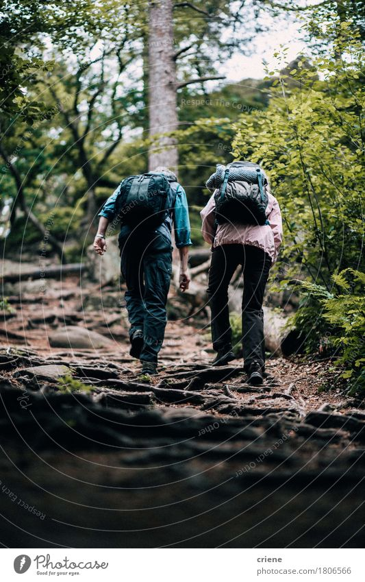 Fit mature couple hiking trough forest Human being Woman Man Tree Clouds Joy Forest Adults Senior citizen Lifestyle Sports Couple Together Hiking Action