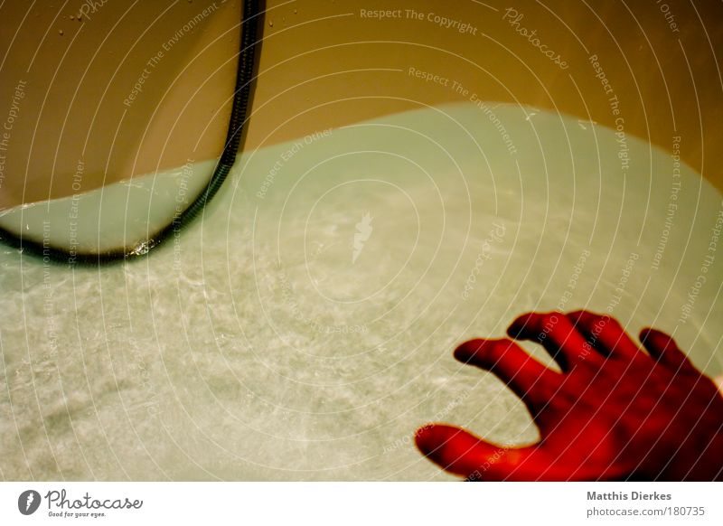 Hand Water Red Death Fear Crazy Dangerous Film industry Threat Creepy Shower (Installation) Bathtub Fear of death Panic Criminality Terror