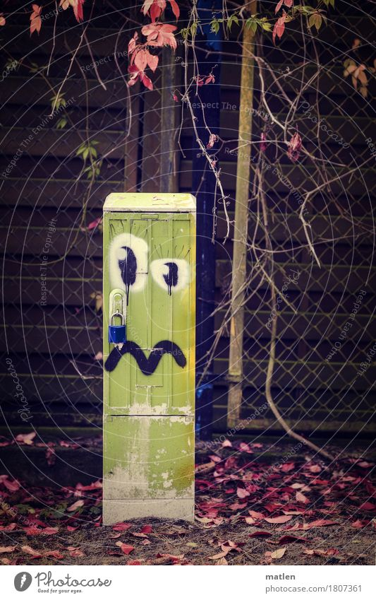Blue Green Red Leaf Sadness Graffiti Brown To fall Vine Castle Garden fence Transformer