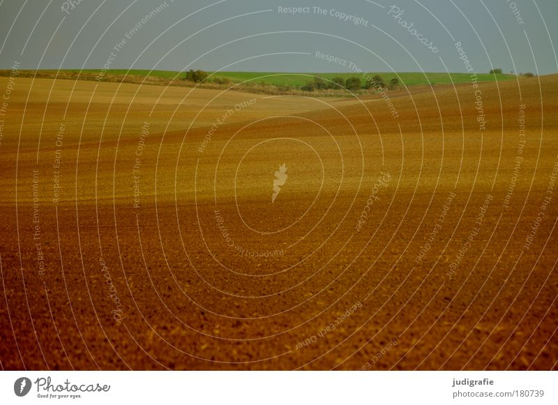 Green Calm Loneliness Brown Field Environment Earth Natural Hill Country life