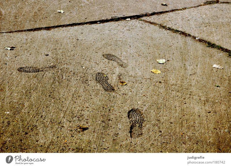 Leaf Dark Lanes & trails Going Concrete Change Tracks Footpath Footprint Direction Seam Pedestrian