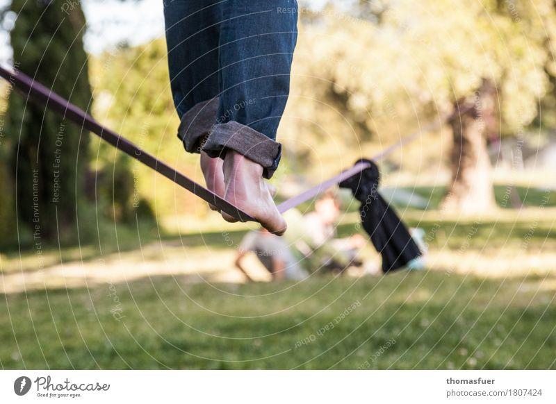 rope, feet, slacking Balance Slacklining Wirewalker Man Feet Legs 18 - 30 years 1 Person Beautiful weather Park Tree Avignon Town Jeans Barefoot Belt Skipping