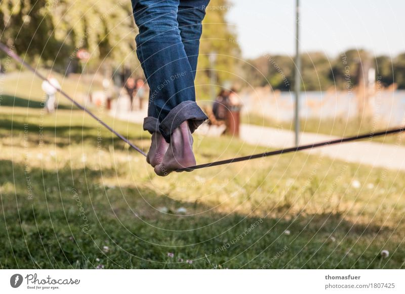 Slackline, rope, feet Balance Slacklining Wirewalker Masculine Legs Feet 1 Human being 18 - 30 years Youth (Young adults) Adults Beautiful weather Tree Park