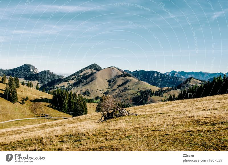 sudel field Hiking Nature Landscape Sky Summer Beautiful weather Meadow Alps Mountain Infinity Sustainability Natural Relaxation Horizon Idyll Perspective
