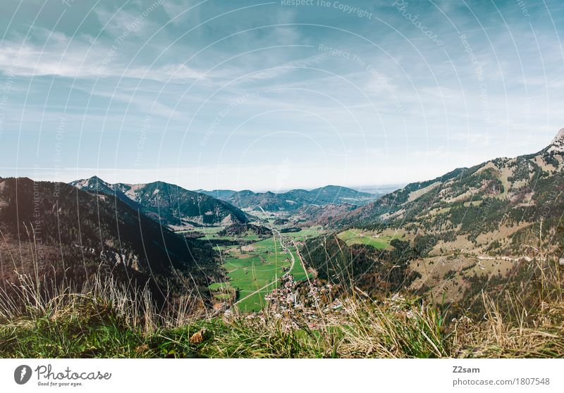 Bayrischzell Hiking Nature Landscape Sky Summer Beautiful weather Meadow Alps Mountain Gigantic Infinity Natural Blue Green Relaxation Colour Freedom Horizon