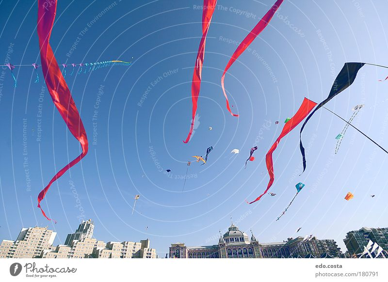 |Kite|#1| Colour photo Exterior shot Deserted Morning Light Shadow Contrast Silhouette Worm's-eye view Sky kite Observe Looking Fantastic Free Infinity Blue Red