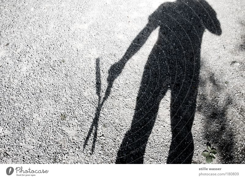 Human being Leaf Loneliness Garden Fear Wait Crazy Dangerous Might Gloomy Threat Creepy Hunting Force Fear of death Passion