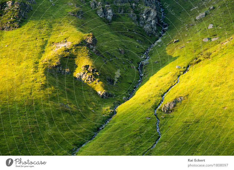 Mountain stream Nature Landscape Water Sunrise Sunset Summer Grass Rock Alps Brook Discover Relaxation Vacation & Travel Hiking Esthetic Clean Wild Yellow Green