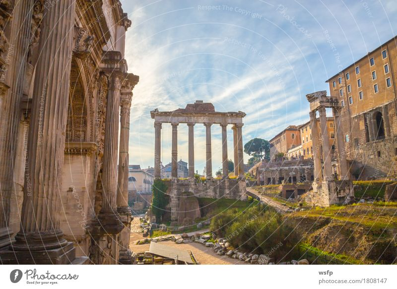 forum romanum in rom panorama Tourism Town Old town Architecture Historic Forum Romano United States Capitol palatine esquiliin Rome History of the Italy travel