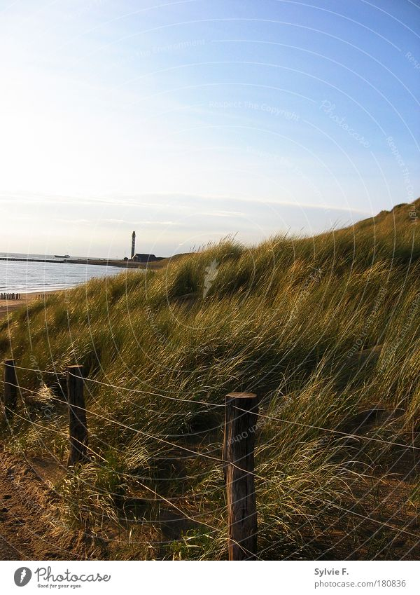 Lighthouse behind the hill Colour photo Exterior shot Deserted Copy Space top Day Sunlight Central perspective Environment Nature Landscape Plant Air Water Sky