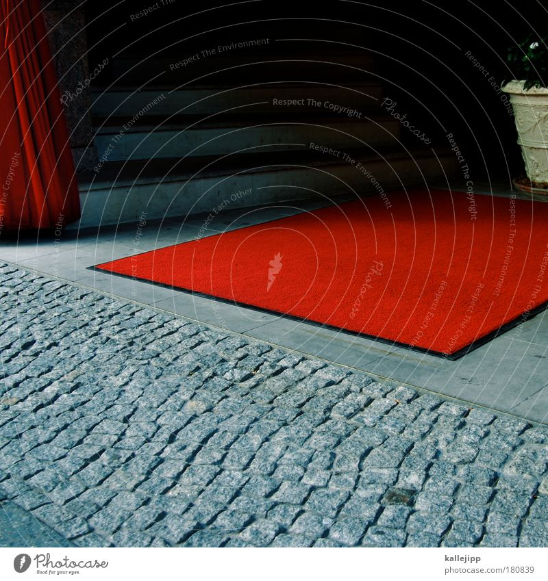 Red Elegant Stairs Culture Hotel Theatre Society Entrance Floor covering Carpet Receive Media industry Red carpet Class society