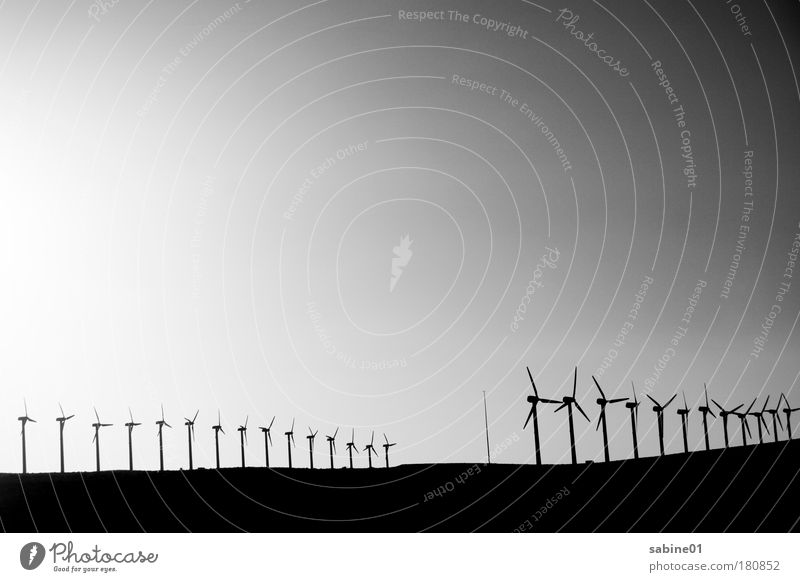 wind farm Black & white photo Exterior shot Experimental Deserted Copy Space left Copy Space bottom Copy Space middle Evening Twilight Light Shadow Contrast