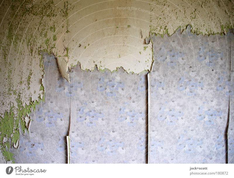 Web for web torn off wallpaper Design Decoration Wallpaper Living room Wall (building) Old Violet Transience Change Remainder Relay Scrap Wallpaper pattern