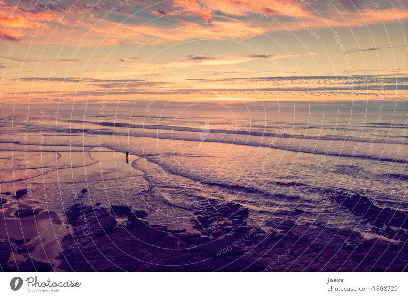If you miss me Vacation & Travel Tourism Summer vacation Beach Ocean Waves Landscape Sky Clouds Beautiful weather Rock Coast Praia das Maçãs Infinity Maritime