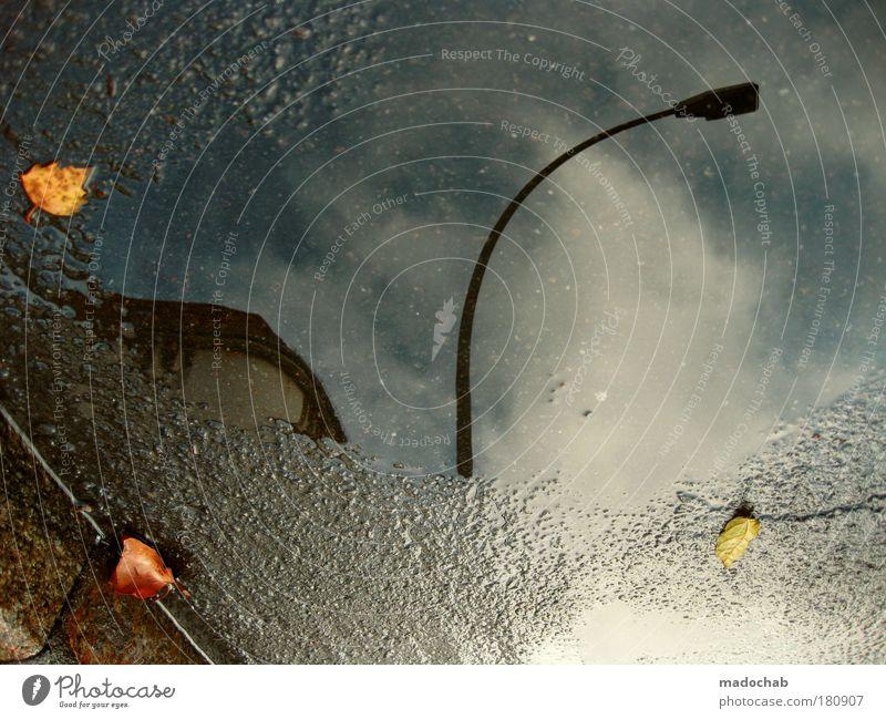 Water City Leaf Autumn Street Dark Rain Wet Transport Climate Exceptional Hope Ground Asphalt Belief Lantern