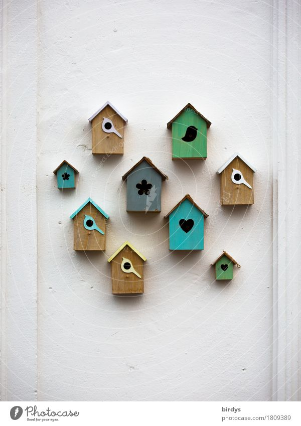 show homes Lifestyle Style Living or residing House (Residential Structure) Wall (barrier) Wall (building) Decoration Collection Birdhouse Super Still Life Hang