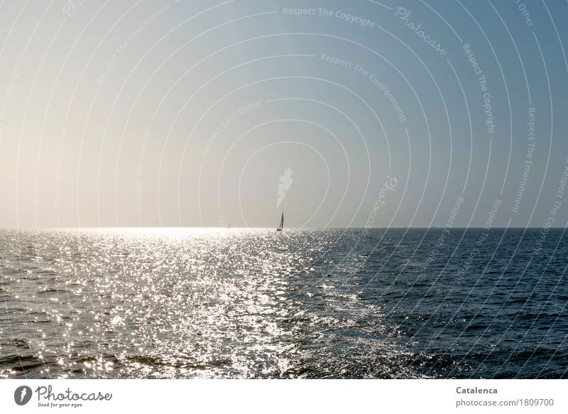 I'll make you a wish. Leisure and hobbies Aquatics Sailing Landscape Air Water Cloudless sky Horizon Summer North Sea Ocean Observe Glittering Authentic Fluid