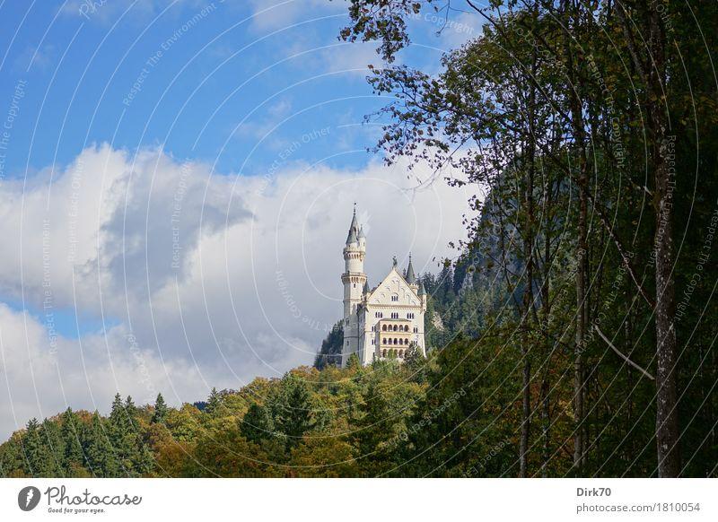 Fabulous Vacation & Travel Tourism Sightseeing Mountain Landscape Clouds Autumn Beautiful weather Tree Forest Alps Castle Hohenschwangau Bavaria Allgäu Deserted
