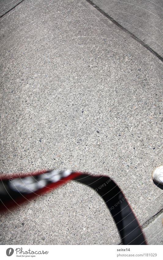 Gray Line Concrete String Seam Paving tiles Belt Concrete slab
