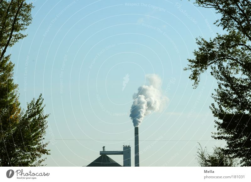industrial nation Colour photo Exterior shot Deserted Copy Space top Day Central perspective Factory Industry Environment Sky Climate change Tree Roof Chimney