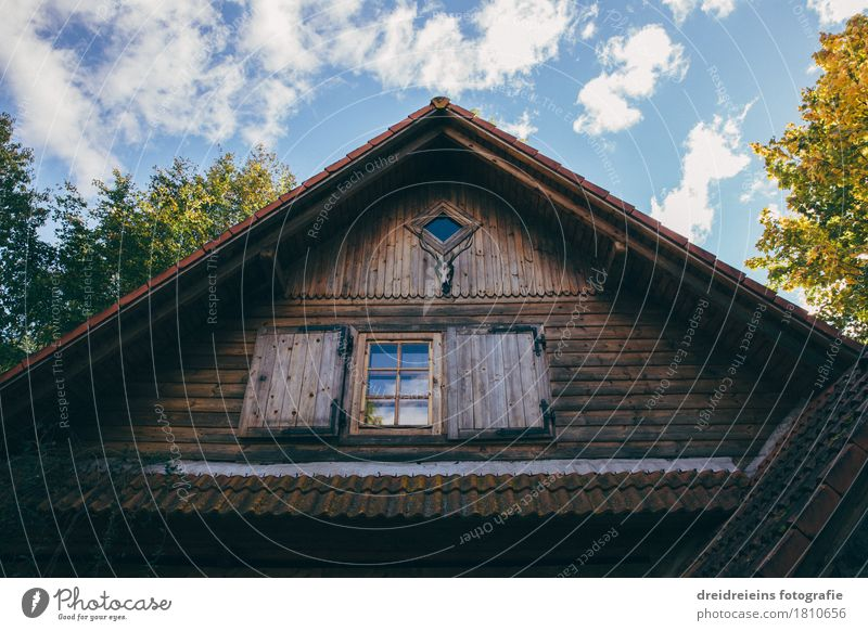 Hunting lodge in the forest Village House (Residential Structure) Detached house Hut Relaxation Hiking Uniqueness Safety (feeling of) Loneliness Gable Roof