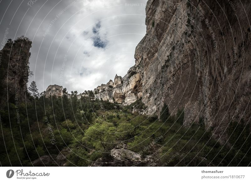 rock face, trees, valley Vacation & Travel Tourism Trip Far-off places Mountain Hiking Environment Nature Landscape Sky Storm clouds Horizon Weather Tree Bushes