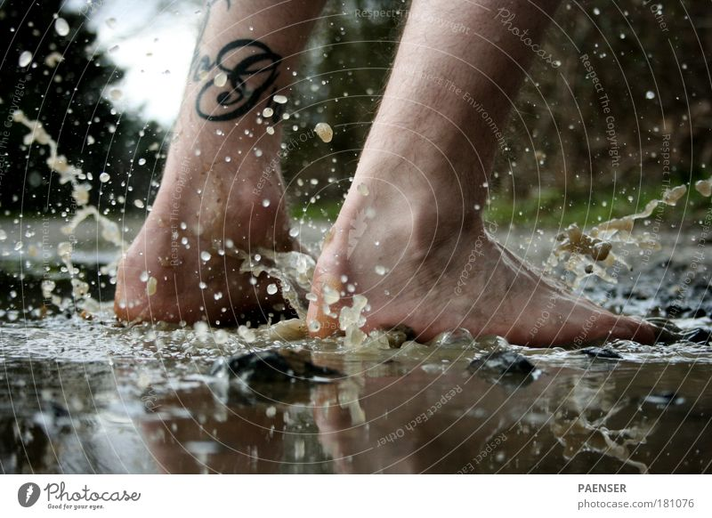 Water Joy Black Cold Autumn Jump Stone Feet Brown Drops of water Cleaning Swimming & Bathing Pedestrian Puddle Autumnal weather