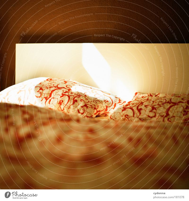 Good morning Colour photo Interior shot Close-up Detail Deserted Copy Space top Copy Space bottom Day Shadow Contrast Sunlight Deep depth of field