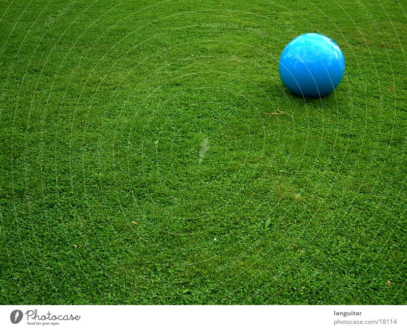 ball on the field Meadow Grass Green Sterile Round Structures and shapes Playing Loneliness Extravagant Large Leisure and hobbies Colour Ball Lawn Blue Contrast