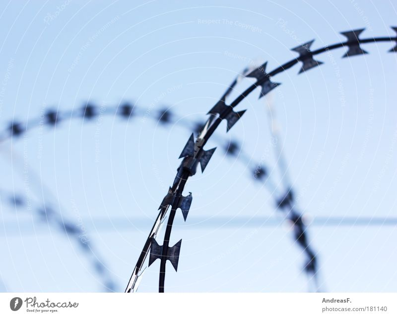 Blue Cold Metal Safety Protection Cuba Fence Border Penitentiary Thorny Reunification Wire Criminality Terror Barbed wire Barbed wire fence