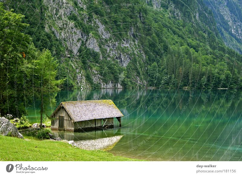 Nature Water Tree Green Blue Plant Summer Calm Yellow Grass Mountain Bavaria Lake Landscape Brown Weather