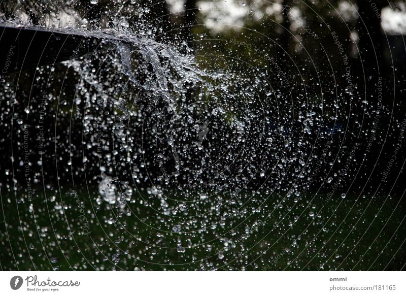 Sea of drops in a fraction of a second Water Drops of water Wet Wild Euphoria Life Movement Joie de vivre (Vitality) Ease Change Well Fountain Inject