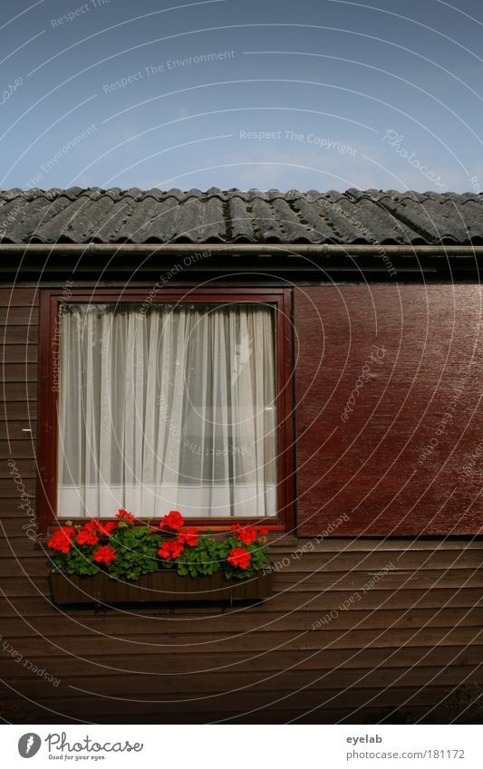 Sky Old Plant Flower Clouds House (Residential Structure) Window Architecture Wood Garden Building Weather Leisure and hobbies Facade Climate Roof