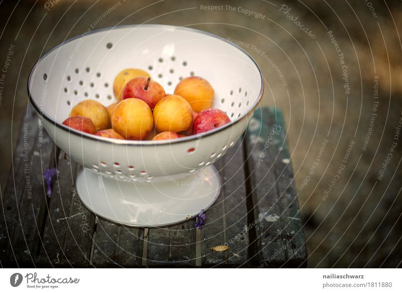 mirabelle plums Food Fruit yellow plums Plum Yellow plum Organic produce Vegetarian diet Diet Crockery Bowl Wood Metal Wooden table Fragrance Delicious Retro