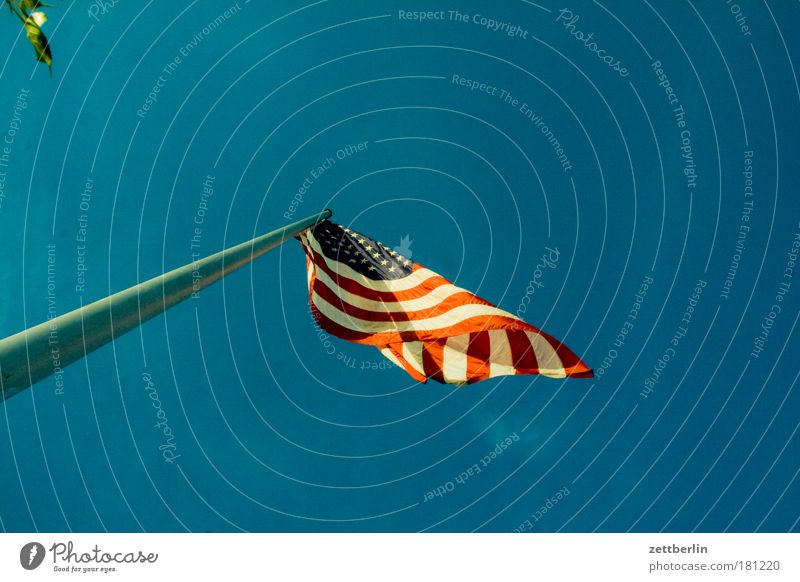 Sky Wind Flag Americas American Flag Copy Space Flagpole Blow Judder Rock'n'Roll Nationalities and ethnicity Patriotism