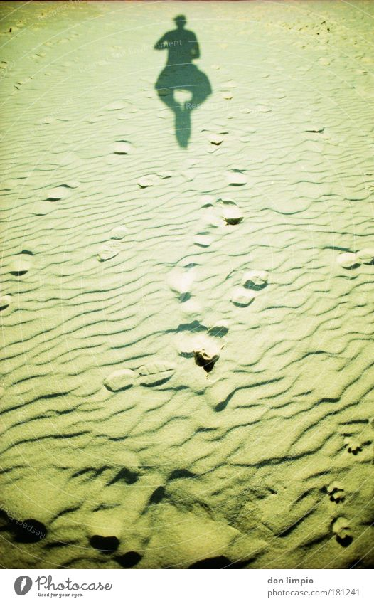 Human being Beach Freedom Movement Sand Healthy Body Flying Tall Free Simple To fall Cross processing