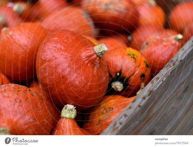 Pumpkin Pumpkin Pumpkin Pumpkin Food Vegetable Nutrition Organic produce Vegetarian diet Fasting Joy Party Feasts & Celebrations Hallowe'en Shopping Orange Many