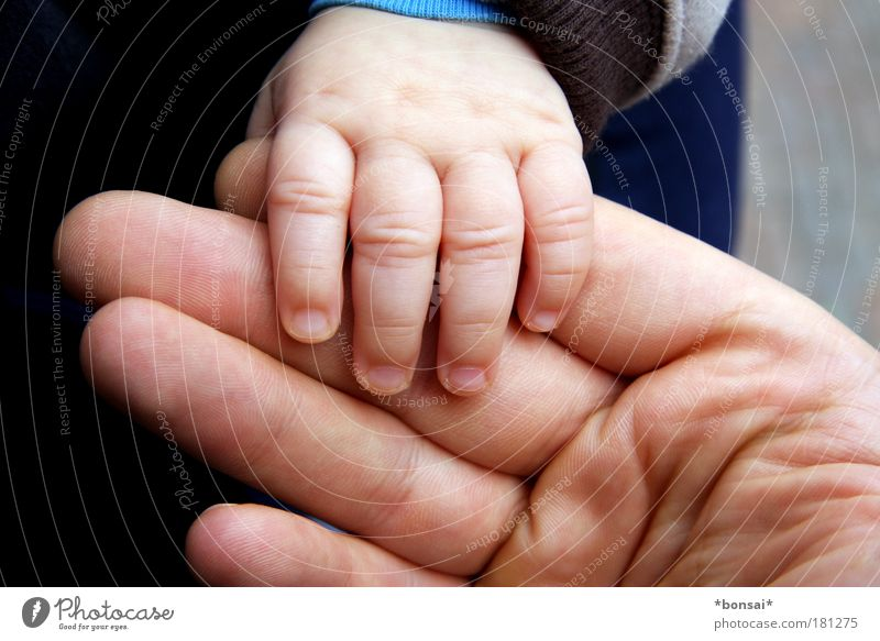 papa and I Happy Human being Masculine Baby Man Adults Father Family & Relations Skin Hand Fingers 2 0 - 12 months Touch To hold on Large Small Near Warmth