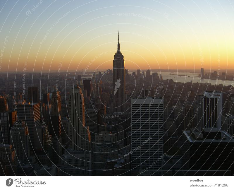 Beautiful City Far-off places Above Building Central perspective Moody Architecture New York Aerial photograph Concrete Large High-rise Horizon Tall Facade