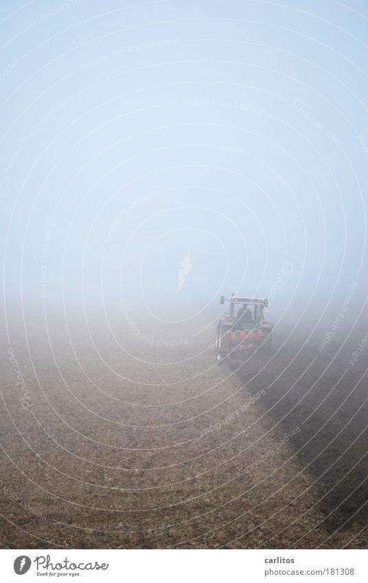 Loneliness Cold Work and employment Autumn Movement Gray Brown Field Fog Environment Earth Arrangement Driving Farmer Harvest Effort