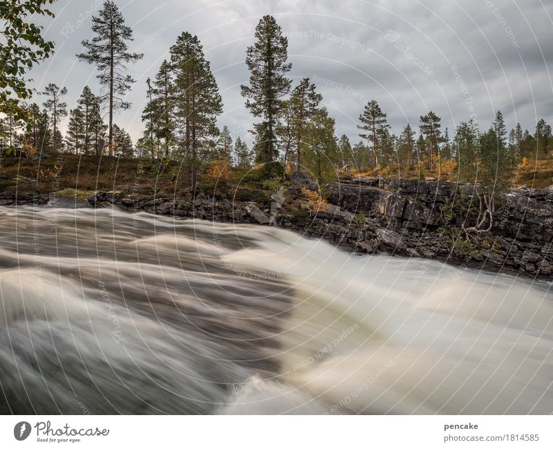 strong intoxication Nature Landscape Elements Water Sky Clouds Sunlight Autumn Tree Waterfall Wet Speed Strong Norway Long exposure Hissing Force
