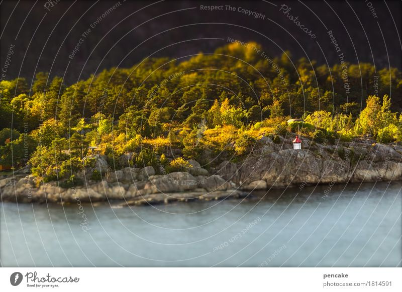 Vacation & Travel Water Landscape Forest Autumn Coast Small Rock Beautiful weather Sign Elements Navigation Lighthouse Maritime Norway Ferry