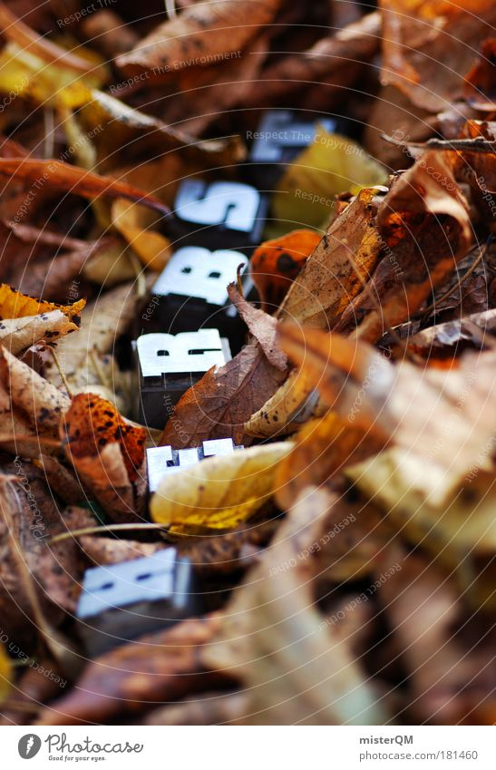 Nature Leaf Autumn Air Brown Weather Characters Ground To go for a walk Letters (alphabet) Search Seasons Hide Autumn leaves Text Autumnal