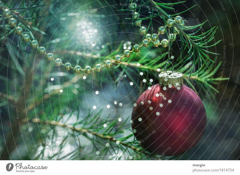 It's Christmas again? Feasts & Celebrations Christmas & Advent Green Red Sphere Christmas tree Christmas decoration Christmas Fair Chain Lighting