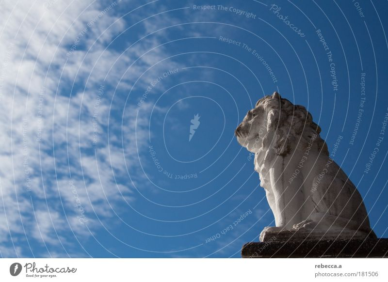 Lion King Colour photo Exterior shot Copy Space left Day Sunbeam Central perspective Full-length Profile Forward Sculpture 1 Animal Stone Observe Think Discover