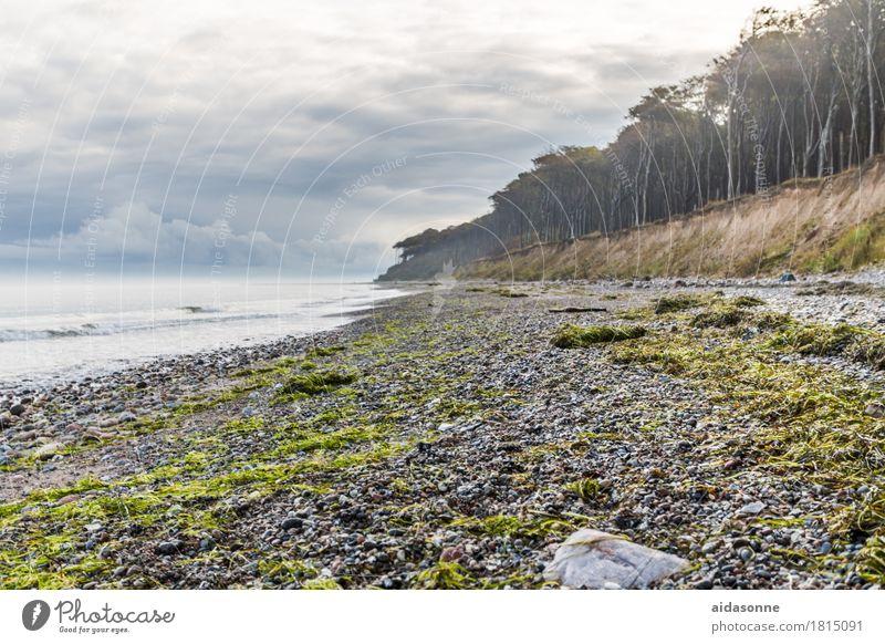 Landscape Clouds Calm Forest Autumn Contentment Baltic Sea Serene Storm Caution Patient Attentive