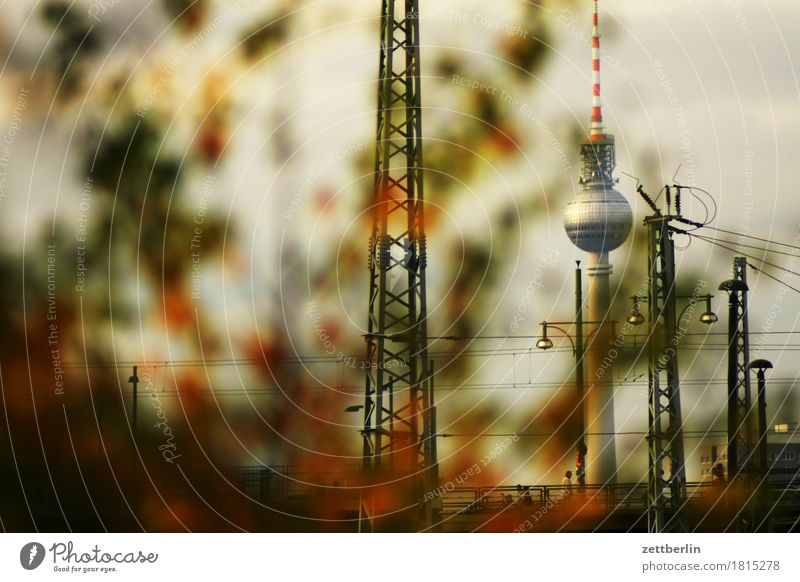 television tower Berlin TV Tower Television tower Alexanderplatz Capital city Germany Town Landmark Hide Hiding place Depth of field Copy Space Deserted Autumn