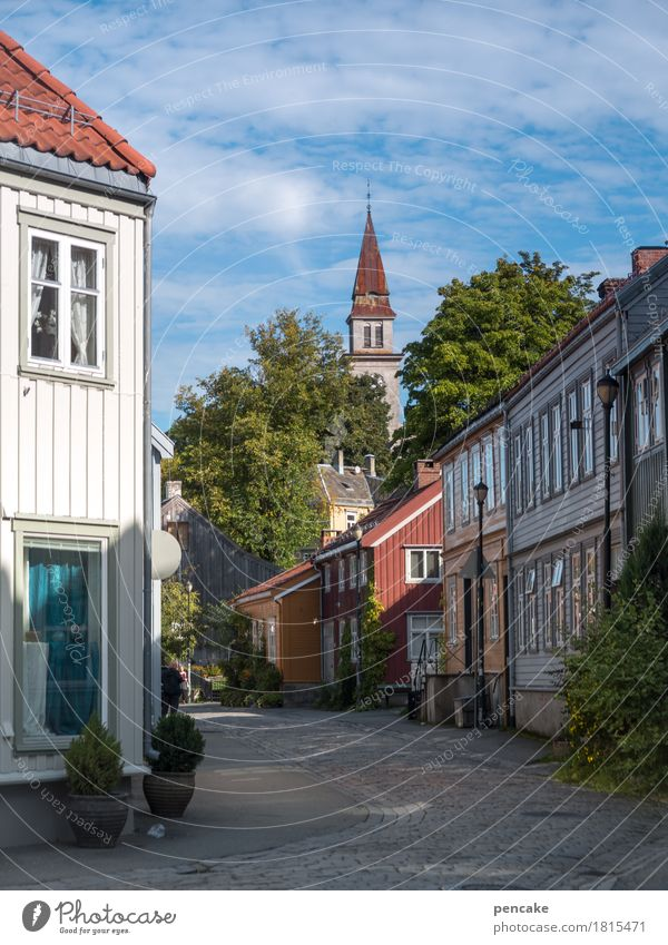 nordic living Beautiful weather Tree Trondheim Norway Europe Old town House (Residential Structure) Church Building Living or residing Wooden house Scandinavia